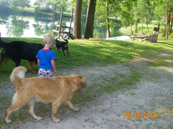 boy_and_dogs